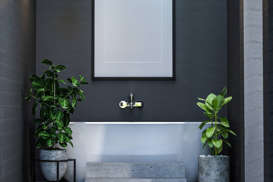 Plants That Thrive in a Windowless Bathroom
