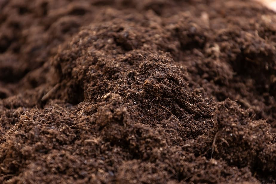 Up Close pic of Well Draining Aerated Soil